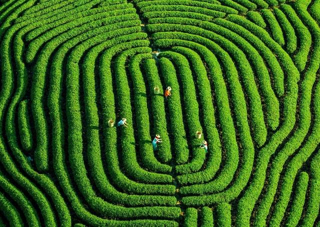 The Fingerprints of the Earth photo by Ruan Kezhuang.