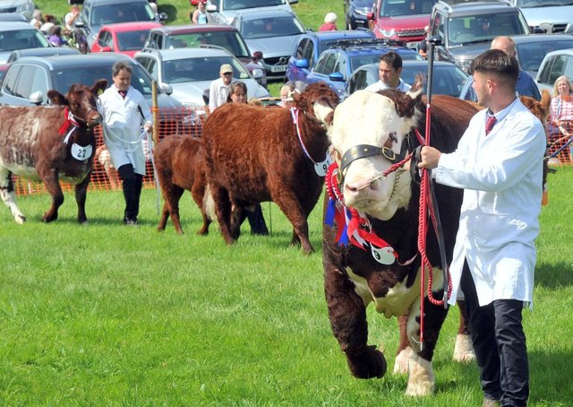 Ryedale Show is due to take place on Tuesday, July 27.