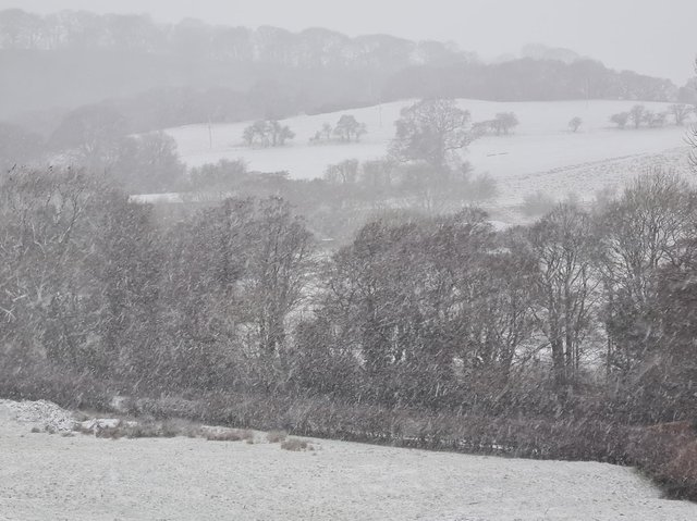 Snow falling on the North York Moors this morning