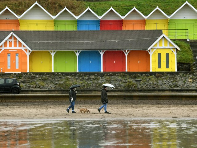 Dog walkers brave the rain in Scarborough's North Bay.