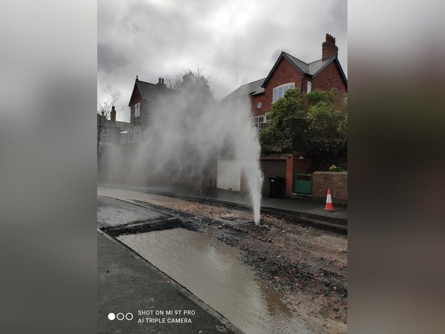 Gushing water pipe in Alexandra Park. Credit for image : Dilys Cluer