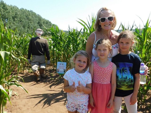 The maze offers great fun for all the family