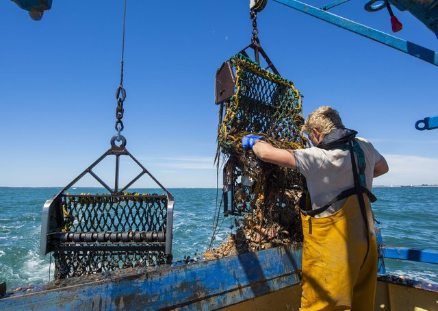 The 'Home and Dry' campaign is reminding those working on fishing vessels in England to take three simple steps to reduce the risk of death from falling overboard.