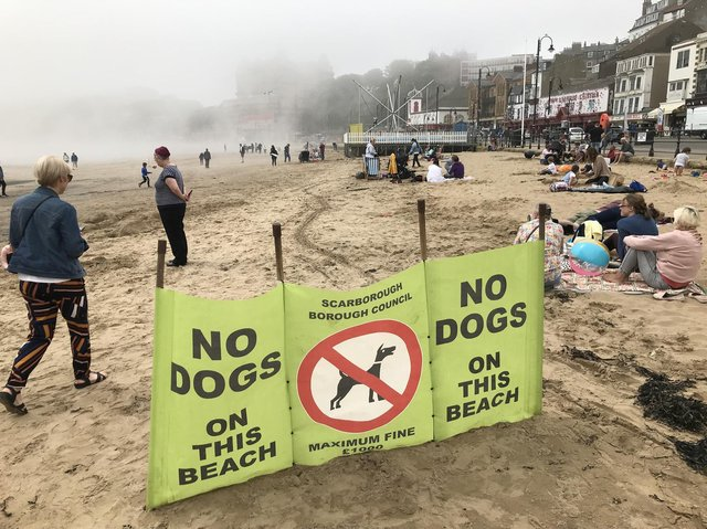 The seasonal dog ban on some beaches comes into effect on May 1.
