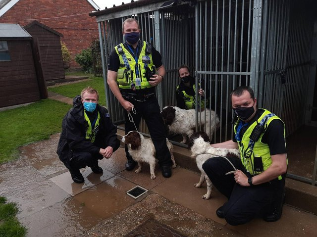 Members of Humberside Police's Rural Task Force with the three dogs.