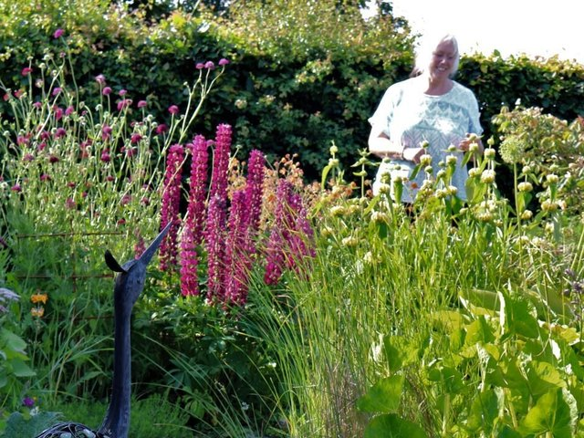 Hutton Buscel Open Gardens will take place at the end of July
