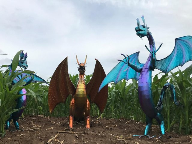 Dragons in the Great Ryedale Maze