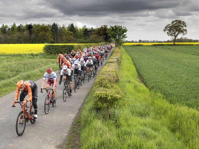 The peloton passes through North Yorkshire countryside during the 2019 Tour de Yorkshire.